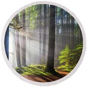 Sunbeams Along Hiking Trails Round Beach Towel