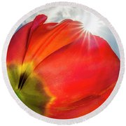 Round Beach Towel featuring the photograph Sunbeams And Tulips by Adam Romanowicz