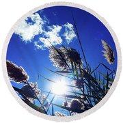 Sunburst Reeds Round Beach Towel