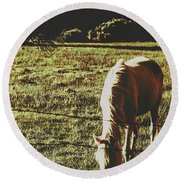 Sundown Horse Meadow Round Beach Towel