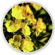 Round Beach Towel featuring the photograph Sundrops by Onyonet  Photo Studios