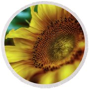 Sunflower 2006 Round Beach Towel