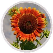 Sunflower 2016 2 Of 5 Round Beach Towel by Tina M Wenger