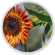 Sunflower 2016 3 Of 5 Round Beach Towel by Tina M Wenger
