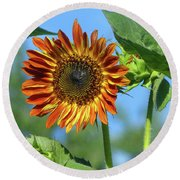 Sunflower 2016 5 Of 5 Round Beach Towel by Tina M Wenger