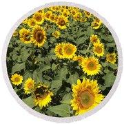 Sunflower 2016 Round Beach Towel