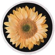 Sunflower #6 Round Beach Towel