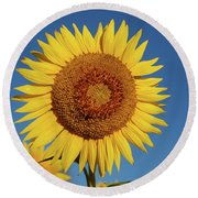 Sunflower And Blue Sky Round Beach Towel by Nancy Landry
