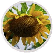 Sunflower Art II Round Beach Towel