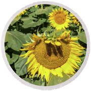 Sunflower Bangs Round Beach Towel