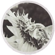 Round Beach Towel featuring the photograph Sunflower Black And White by Andrea Anderegg