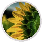 Sunflower Blooming Detailed Round Beach Towel