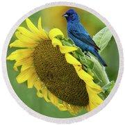 Sunflower Blue Round Beach Towel