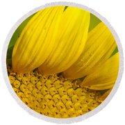 Sunflower Close Up Round Beach Towel