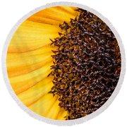 Sunflower Closeup Round Beach Towel by Bob Orsillo