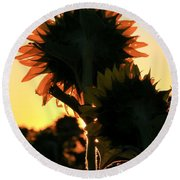 Round Beach Towel featuring the photograph Sunflower Greeting  by Chris Berry