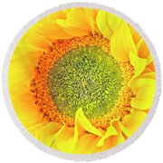 Sunflower Hdr Round Beach Towel