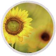 Sunflower In A Field Round Beach Towel