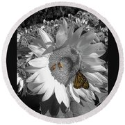Round Beach Towel featuring the photograph Sunflower In Black And White by Melinda Blackman