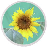 Sunflower In The Summer Time Round Beach Towel