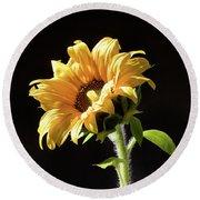 Sunflower Isloated On Black Round Beach Towel