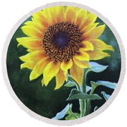 Sunflower Round Beach Towel by Janet King