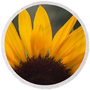 Sunflower Petals Round Beach Towel