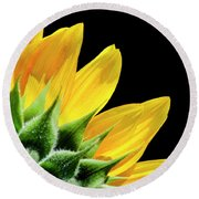 Round Beach Towel featuring the photograph Sunflower Petals by Christina Rollo