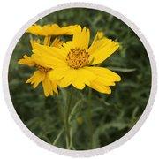 Sunflower Sanctuary  Round Beach Towel
