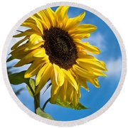 Sunflower Round Beach Towel by Scott Carruthers