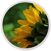 Sunflower Series I Round Beach Towel