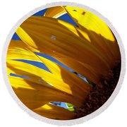 Sunflower Shadows Round Beach Towel