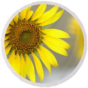 Sunflower Round Beach Towel by Sheila Brown