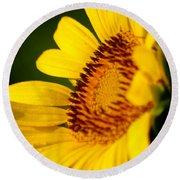 Sunflower Side Light Round Beach Towel
