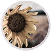 Sunflower Solitude Round Beach Towel