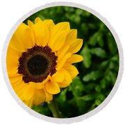 Sunflower Still Life 2 Round Beach Towel by Warren Thompson