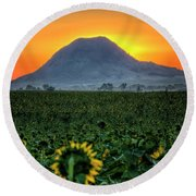 Round Beach Towel featuring the photograph Sunflower Sunrise by Fiskr Larsen