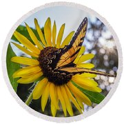 Sunflower Swallowtail Round Beach Towel