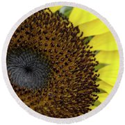 Round Beach Towel featuring the photograph Sunflower Up Close by Nikki McInnes