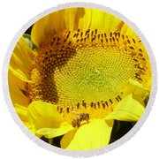 Sunflower With Honeybee Round Beach Towel