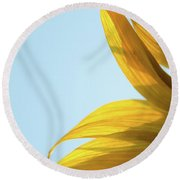 Round Beach Towel featuring the photograph Sunflowers 11 by Andrea Anderegg