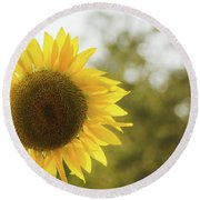 Round Beach Towel featuring the photograph Sunflowers 12 by Andrea Anderegg