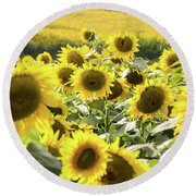 Round Beach Towel featuring the photograph Sunflowers 13 by Andrea Anderegg