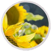 Sunflowers 14 Round Beach Towel