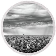 Sunflowers And Rain Showers Round Beach Towel by Penny Meyers