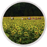Sunflowers Everywhere Round Beach Towel
