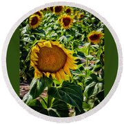 Sunflowers Glaze Round Beach Towel