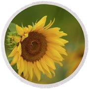 Sunflowers In Field Round Beach Towel