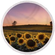 Sunflowers In Pink Round Beach Towel
