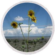 Sunflowers On The Gorge Round Beach Towel